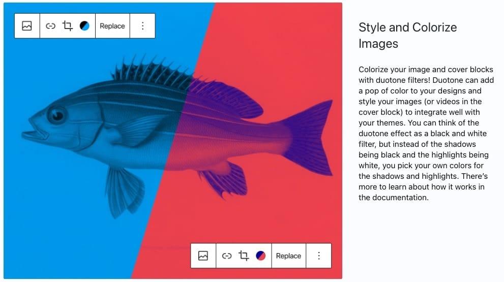 WordPress 5.8 RAABAUKE Web Design